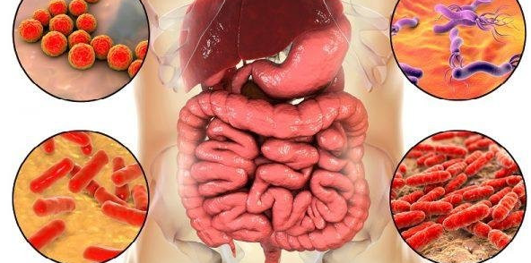 Дисбактериоз кишечника причины и лечение