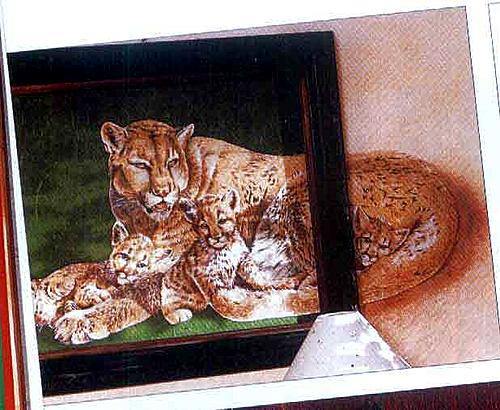 Вылезшая картина - наполовину за стеклом