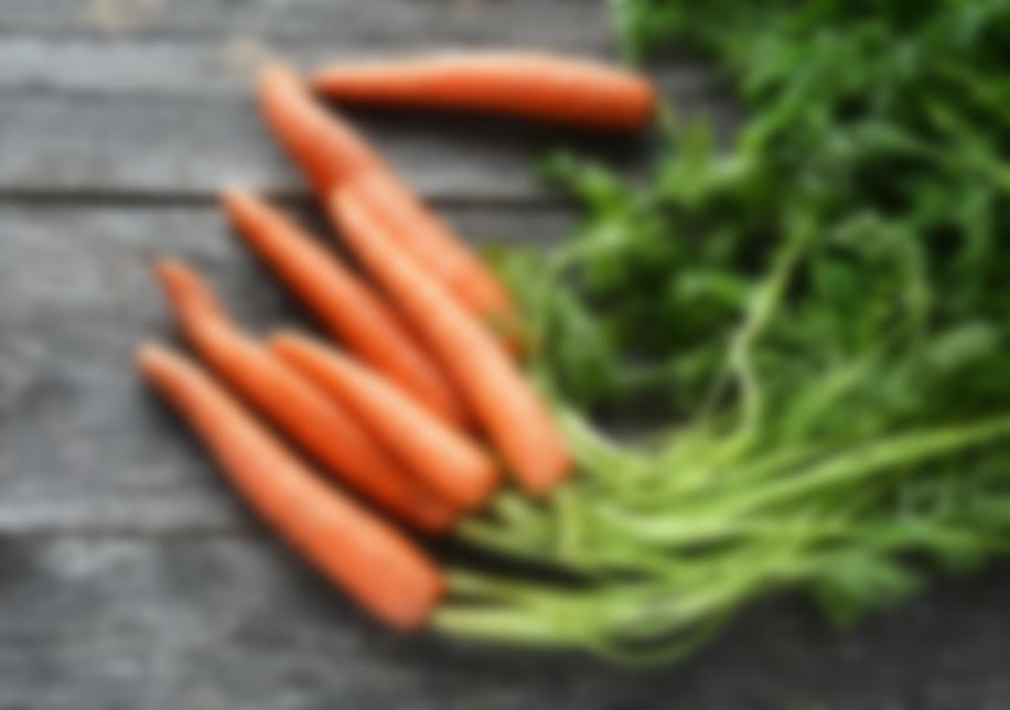 самая хорошая морковь семена отзывы