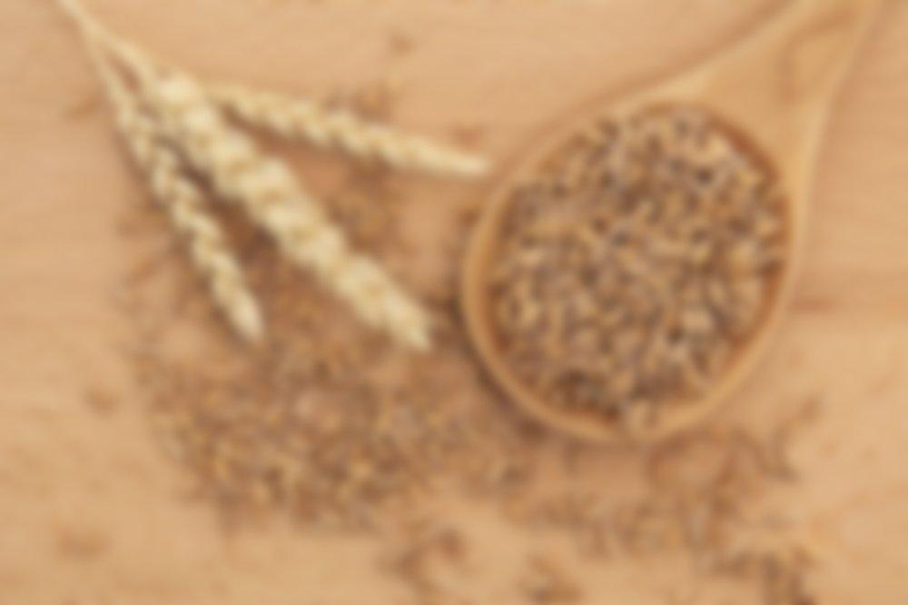 Полба — как готовить правильно, вкусно и с максимальной пользой для здоровья