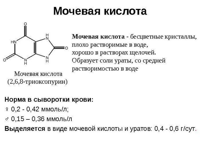 крови высокий уровень мочевой