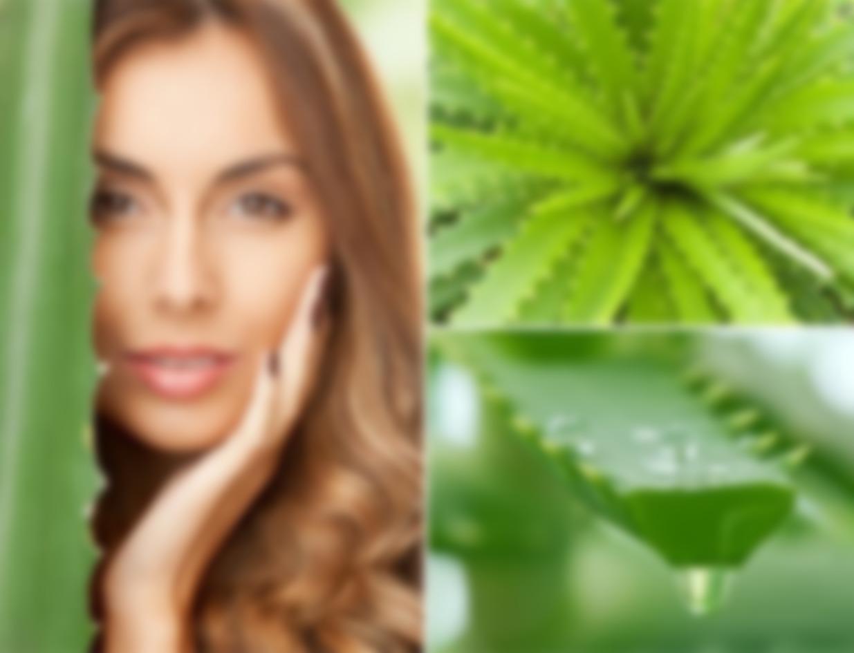 Сок алоэ для кожи лица: натуральная эффективная альтернатива дорогостоящей косметике картинки