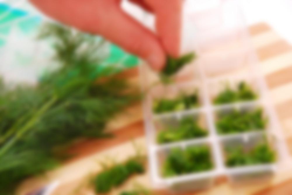 как можно сохранить зелень на зиму