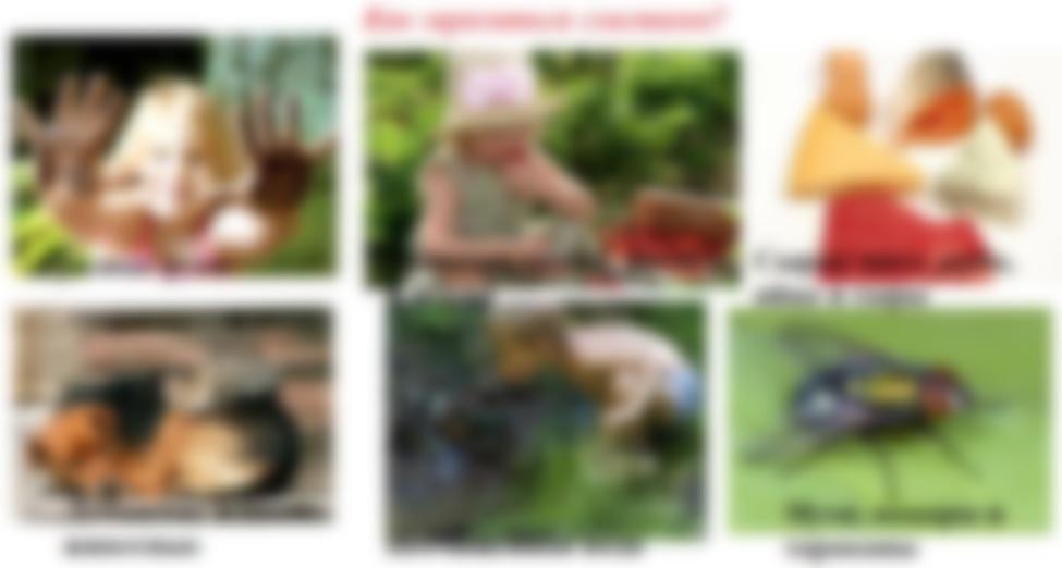 Профилактика паразитов у детей комаровский