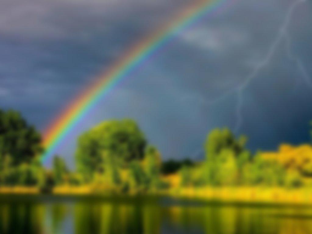 радостного самые красивые картинки погоды крепкий тростниковый