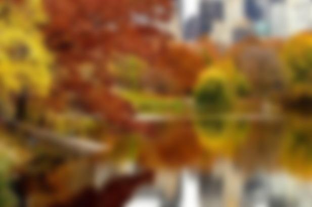 осень в нью йорке фото