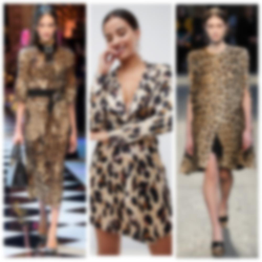 Картинки по запросу леопардовый принт