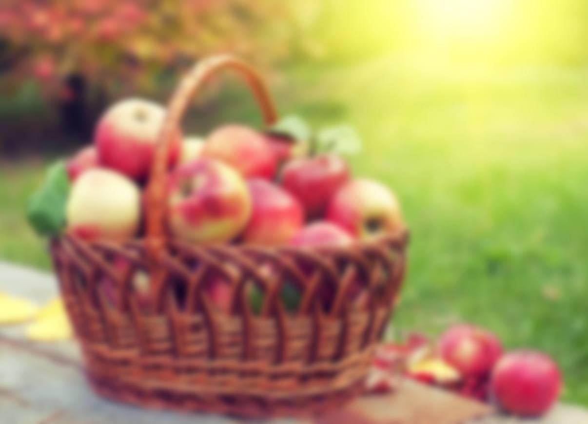 Какого числа Яблочный Спас в 2019 году?