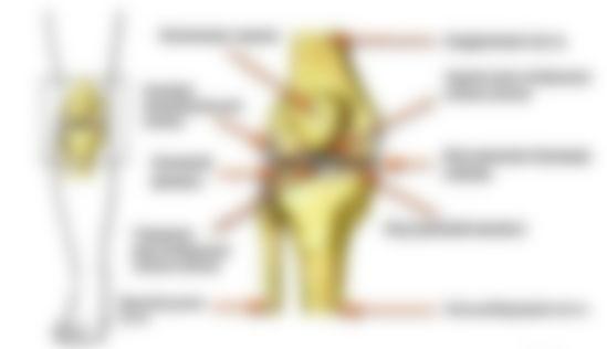 помощь боли в коленях при приседании лечение нравится такое думаю