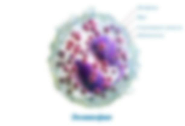 Эозинофилы повышены у взрослого причины как лечить
