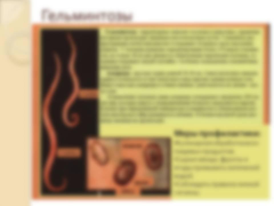 Таблетки от глистов комаровский