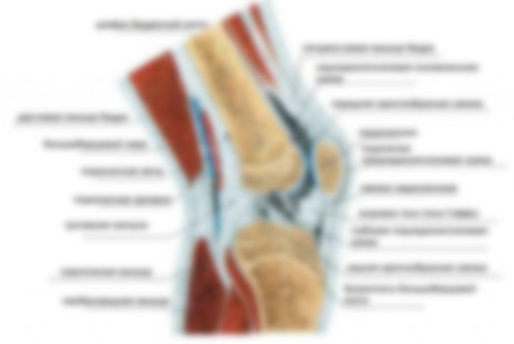 Боль в колене при приседании и вставании: причины и лечение
