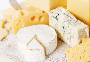 Как хранить сыр в холодильнике долго свежим
