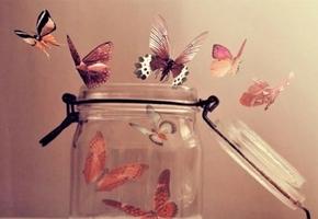 К чему снятся бабочки во сне для женщины и мужчины