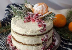 Торт на Новый год 2022 своими руками в домашних условиях