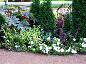 11 простых способов украсить сад