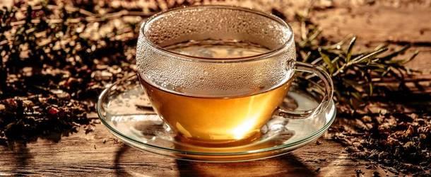Как правильно пить почечный чай