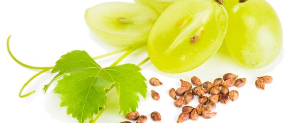 Польза виноградных косточек для здоровья