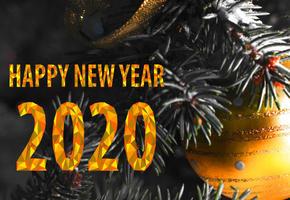 Смешные и короткие тосты на Новый год 2020