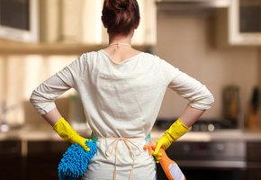 Как избавиться от блох в квартире в домашних условиях