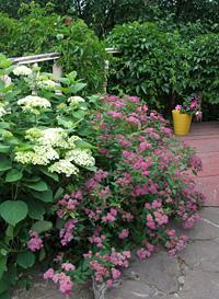 9 идей отом, как сделать сад роскошным