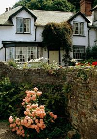 9 идей о том, как сделать сад роскошным